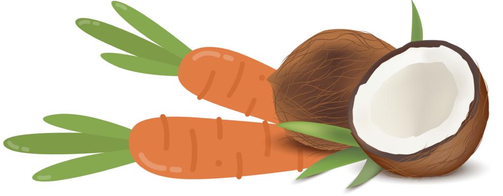 coco y zanahoria